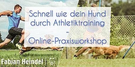 """Online-Praxisworkshop: """"Schnell wie dein Hund durc Tickets"""