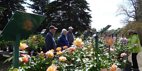 St. Albert Botanic Park Rose Sale & Gift Shop Opening tickets