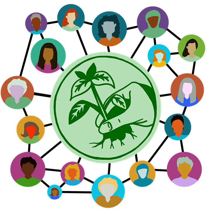 Women's online Retreat: Seeds of Connection image
