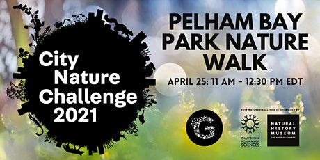 City Nature Challenge 2021: Pelham Bay Park Nature Walk tickets