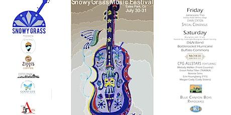SnowyGrass Music Festival 2021 tickets
