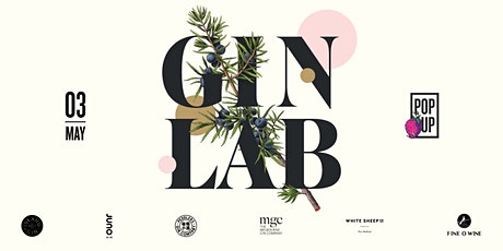 For the Love of GIN and Snacks by Fine O wine tickets