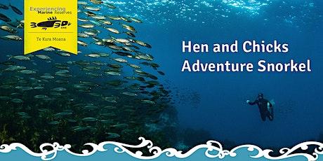 Hen and Chicks Adventure Snorkel tickets