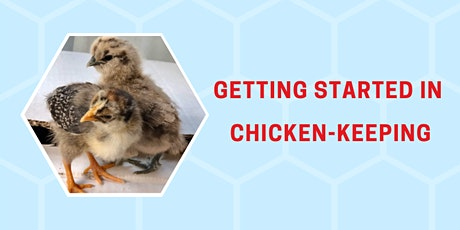 Getting Started in Chicken-Keeping tickets