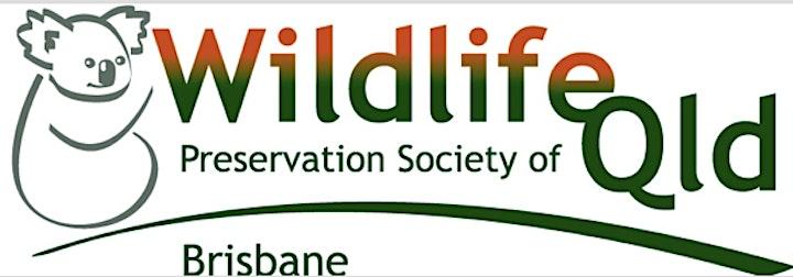 WPSQ Brisbane Branch Nature walk and AGM September 2021 image