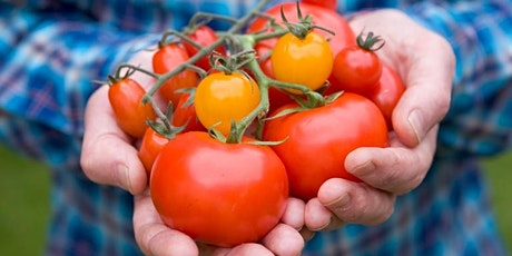 Launch Sustainable Food Places for Clackmannanshire tickets