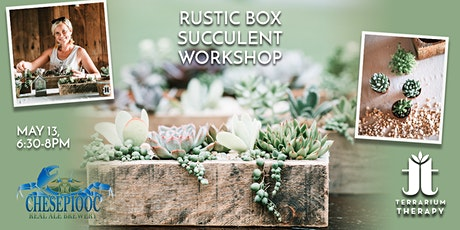 In-Person Rustic Succulent Box Workshop at Chesepiooc Real Ale Brewery tickets