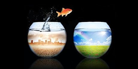 Histoire, Science et Environnement, comprendre pour mieux agir - Joël GREA billets