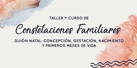 Taller de Constelaciones Familiares: Proyecto Sentido entradas