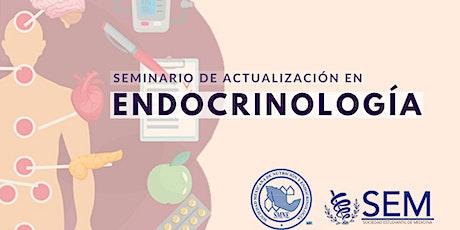 Seminario de Actualización en Endocrinología entradas