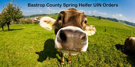 2021-2022 Bastrop County Spring Heifer Validation tickets