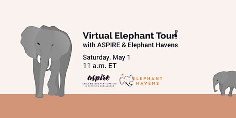 Live Elephant Tour with ASPIRE and Elephant Havens tickets
