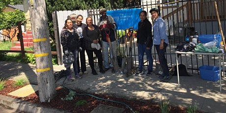 From Hell Strip to Habitat : How to Install a Sidewalk Habitat Garden tickets