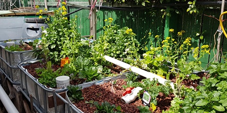 Backyard Aquaponics tickets