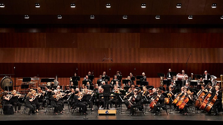Adelaide Symphony Orchestra - Symphony By The Sea image