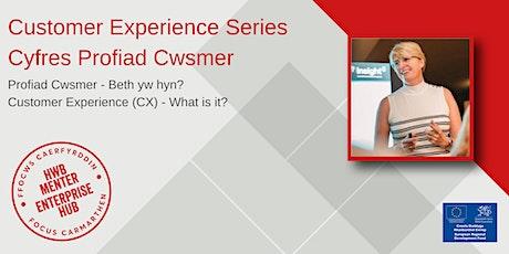 Profiad Cwsmer - beth yw hyn? | Customer Experience (CX) - what is it? tickets