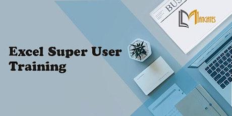 Excel Super User  1 Day Virtual Live Training in Hamburg biglietti