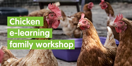 Chicken e-learning Family Workshop - Self Led tickets