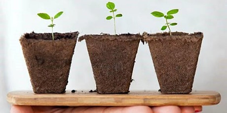 Sowing Seeds for Success: Top Tips for Grant Applications! tickets