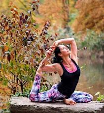 Restorative & Stretching Yoga LIVE STREAM tickets