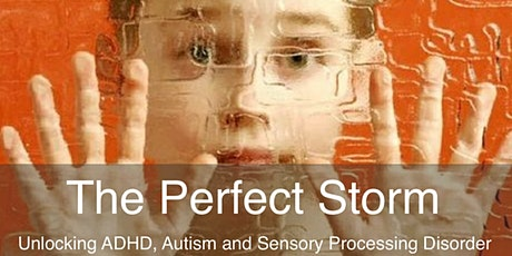 The Perfect Storm - A Sensory and Behavior Workshop for Parents tickets