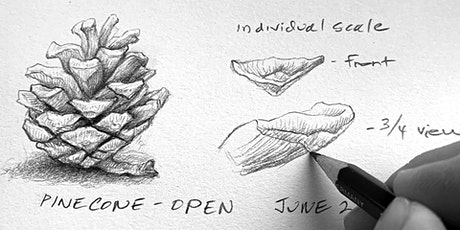Creating A Nature Journal with Erica Beade tickets