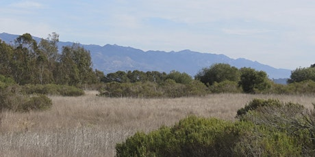 Medicinal Herb Walks of Santa Barbara - Elwood Bluffs & Butterfly Preserve tickets