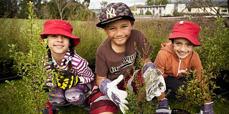 Matariki Community Planting at Totara Park tickets