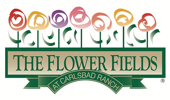 Virtual Field to Vase Experience @ The Flower Fields image