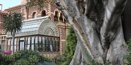 Significant Trees of Rippon Lea Garden - A Walking Tour tickets