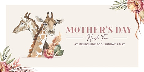 Mother's Day High Tea at Melbourne Zoo (Morning) tickets