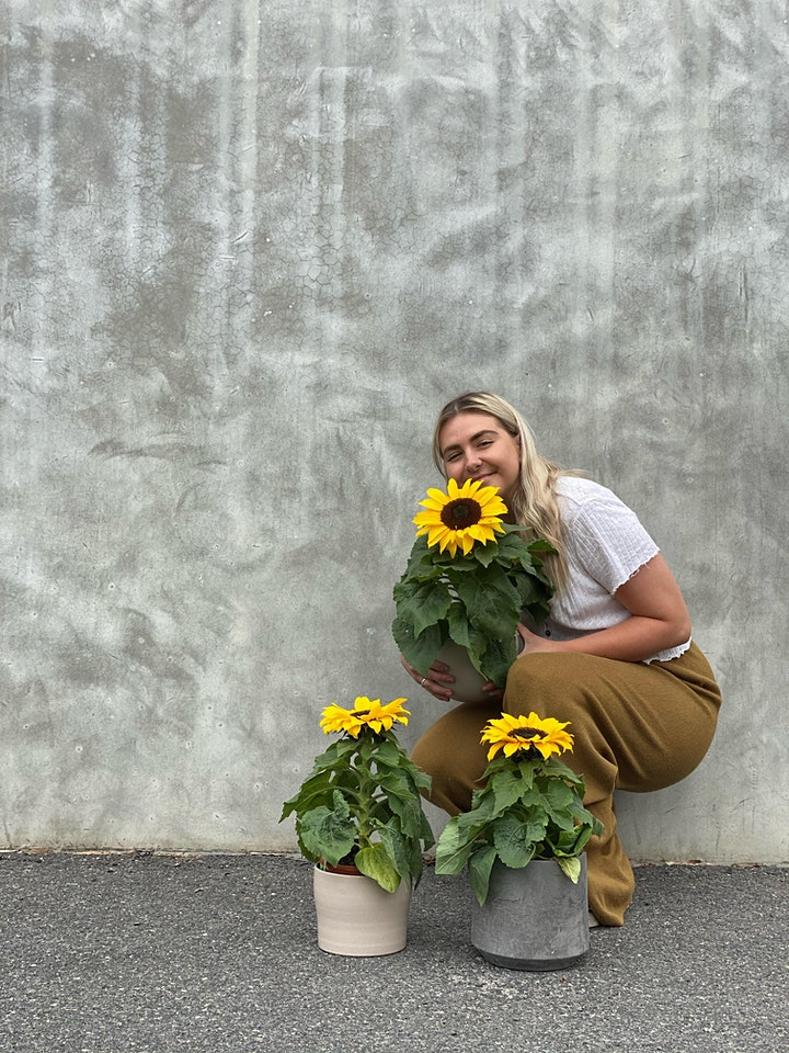 We the Wild x Good Day Co Plant Festival image
