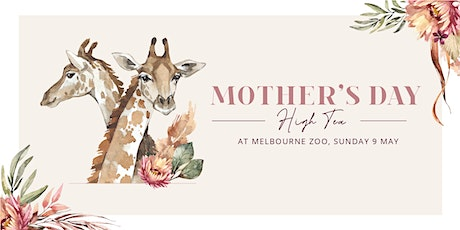 Mother's Day High Tea at Melbourne Zoo (Afternoon) tickets