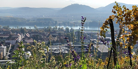 19. Österreichische Botanik-Tagung 2021 Tickets