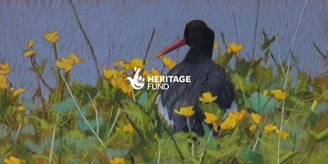 Online Lecture: Plants and the Birdscape tickets