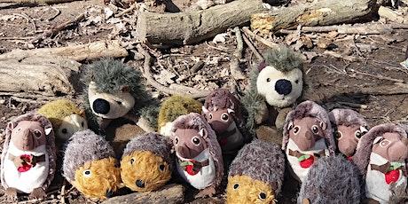 Hedgehogs @ Hill Top Nuneaton tickets