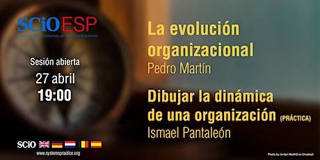 SCiO_Esp. La evolución organizacional tickets