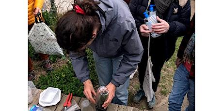 Permanence et vente de boutures des plantes locales billets
