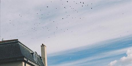 Débat mouvant sur les enjeux de la nature en ville billets