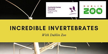Incredible Invertebrates with Dublin Zoo tickets