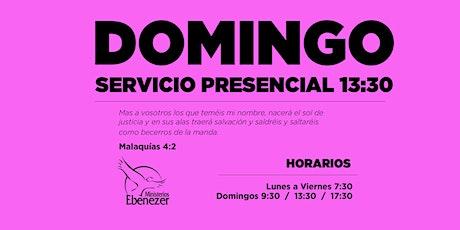 DOMINGO 11 ABRIL / 13:30 entradas