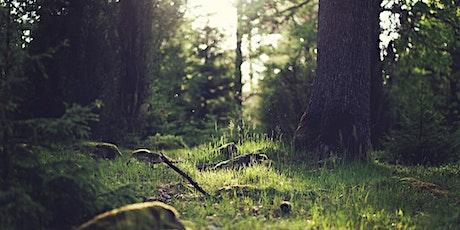 Journée sur l'écologie du livre billets