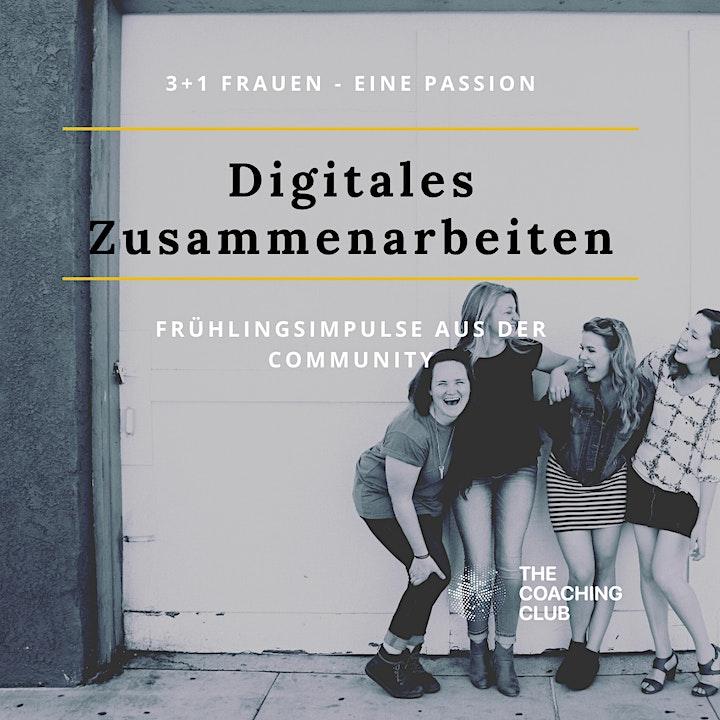 3+1 Frauen - eine Passion: Digitales Zusammenarbeiten: Bild