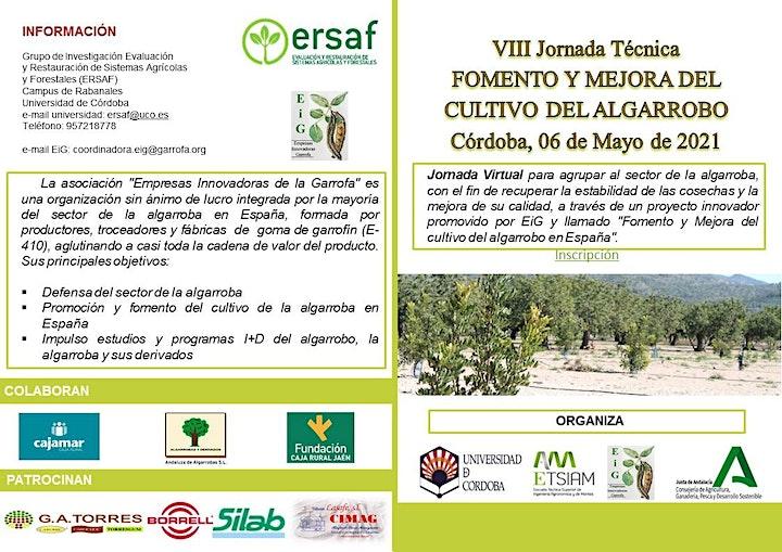 Imagen de VIII Jornada Técnica de Fomento y Mejora del Cultivo del Algarrobo