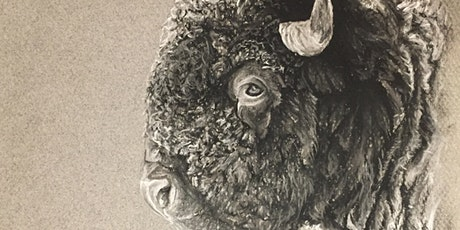 Wildlife | Drawing Class with Chris Macleod tickets