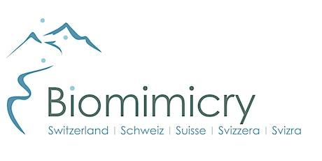 Webinar from Biomimicry Switzerland tickets