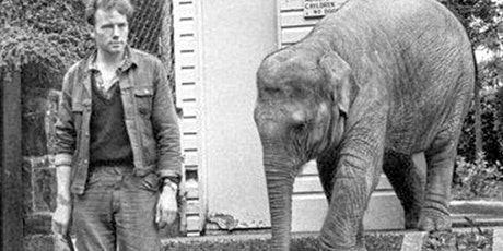 The Elephant of Belfast: A Conversation with Author S. Kirk Walsh tickets