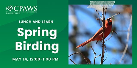 Spring Birding: Identifying and Spotting Species in Manitoba's Wetlands tickets