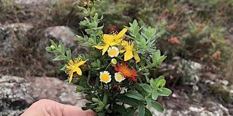 Flower Essence Medicine: The Essentials tickets