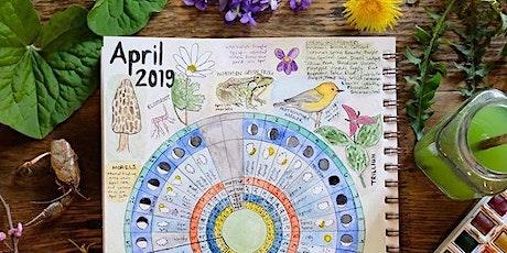 Phenology & Cultivating Presence | April Women's Circle ingressos